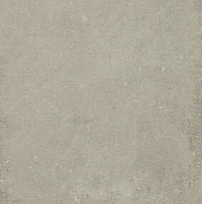 ESPRIT DE REX NEUTRAL GRIS 6MM 120X120 R (762099) 120x120 Керамогранит