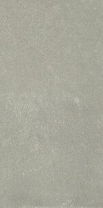 ESPRIT DE REX NEUTRAL GRIS 6MM 60X120 RT (762103) 60x120 Керамогранит