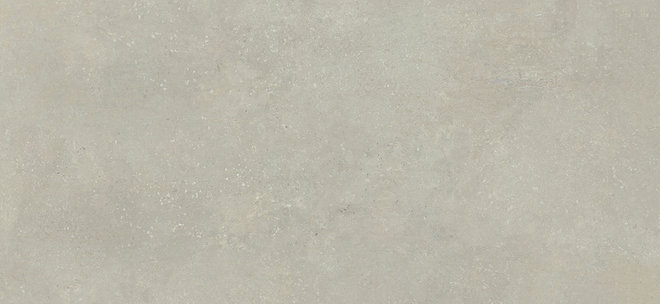 INSTINTO TAUPE NATURAL (-8431940346828-) 119,3x260 Керамогранит